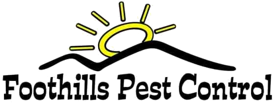 Residential commercial pest removal easley greenville sc residential commercial pest removal easley greenville sc foothills pest control solutioingenieria Image collections