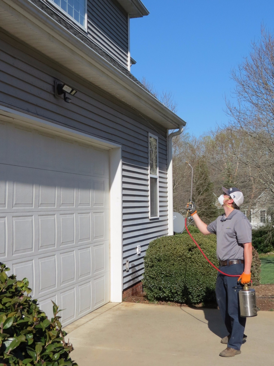 Find Pest Control Services in Easley and Greenville, SC